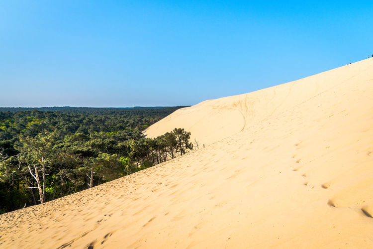 Sky Sand Scenics - Nature Tranquil Scene Land Tranquility Beauty In Nature Landscape Environment Nature Clear Sky Blue Non-urban Scene Day Sand Dune Desert No People Plant Copy Space Horizon Arid Climate Climate Outdoors