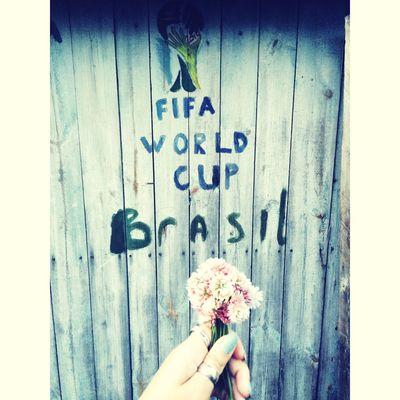 ЧМ2014 лето2014 футбол ?