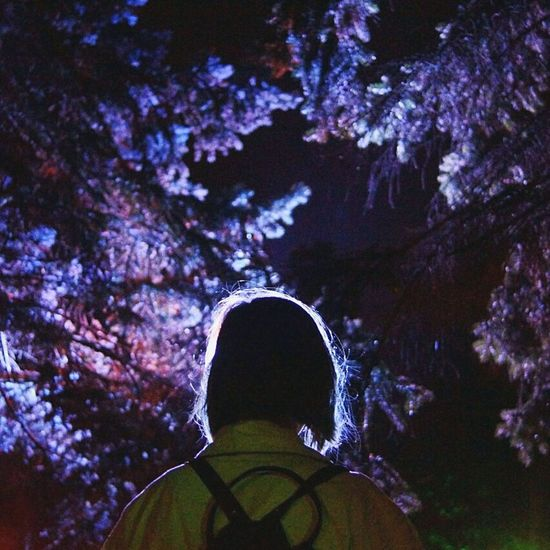 One Person Night One Man Only Star - Space Nature Outdoors Illuminated Sky Beauty In Nature Tree People Forest Men Ostankinotvtower Milky Way Lights Nightlife Space Rear View Adults Only Only Men Adventure Adult Mountain