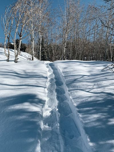 breaking trail in fresh powder. Snowshoeing Utah Wasatch County Wasatch Back Cold Temperature Snow Winter Nature No People Day Frozen
