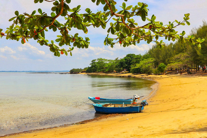 Tree Beach Nautical Vessel Sand Water Travel Tropical Climate Nature Sea Sky Scenics Landscape Vacations Travel Destinations Tranquility Outdoors Cloud - Sky No People Day Moored เกาะทะลุ...ระยอง Feshness Nature Beauty In Nature Summer