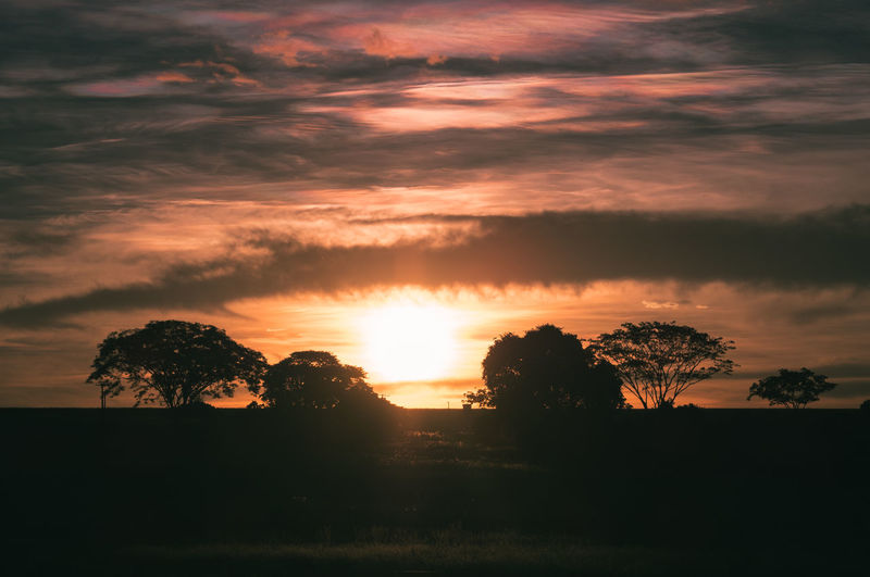 Sky Cloud - Sky Sunset Tree Beauty In Nature Tranquil Scene Tranquility Scenics - Nature Plant Silhouette Nature No People Orange Color Landscape Environment Sun Idyllic Non-urban Scene Sunlight Outdoors