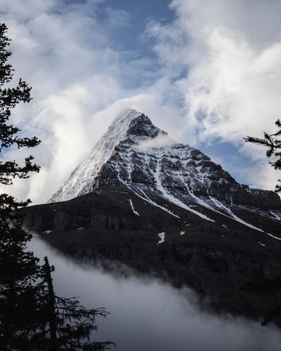 view at mount robson. Explore Mount Robson Provincial Park Sky Cloud - Sky Tree Nature Plant Day Beauty In Nature Snow Scenics - Nature Mountain Outdoors Snowcapped Mountain My Best Photo