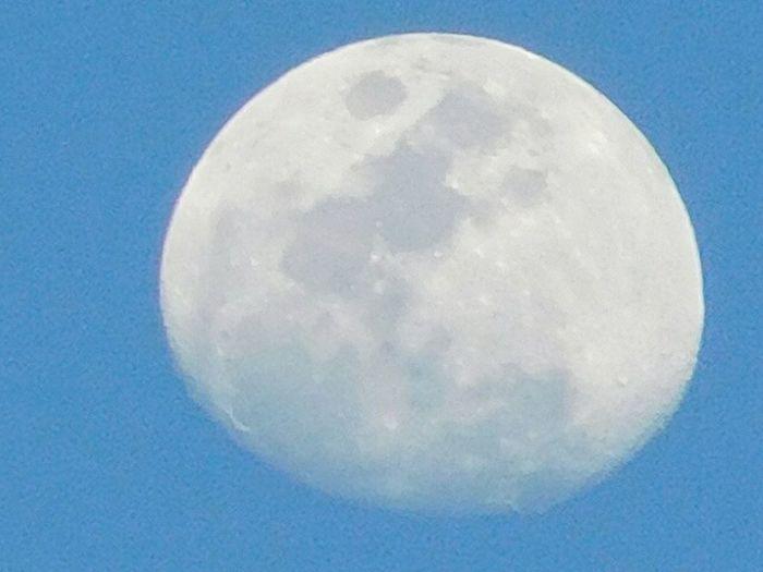 Daytime Moon Moon