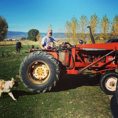 What a perfect morning for a tractor ride! Sure made this boy happy! Zed Zevincarlos Papasboy Tractorride Autumnleaves Aussies Cowboys Thelittlestcowboy Annabelle