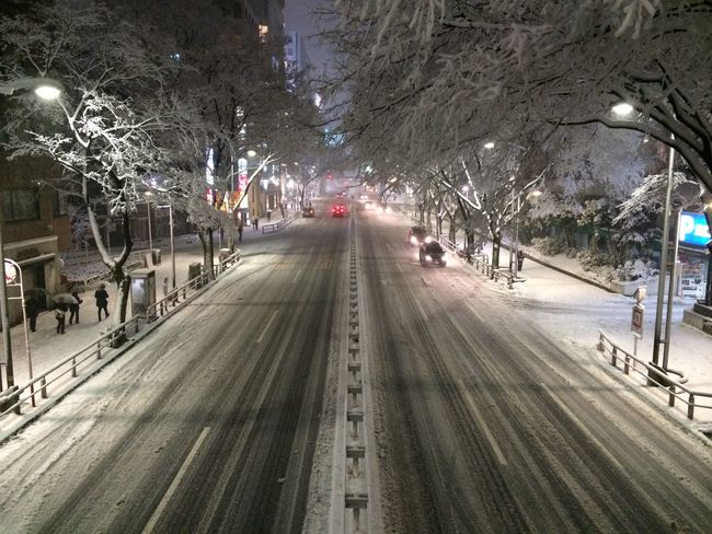 City Japan Night Road Shibuya Snow Snowing Tokyo Winter