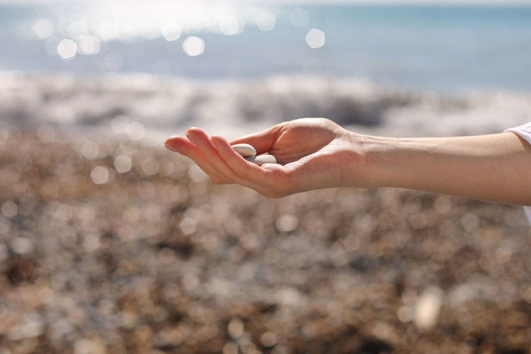 Cropped hand of woman holding pebble at beach
