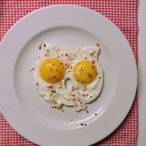 High angle view of fried egg served on table