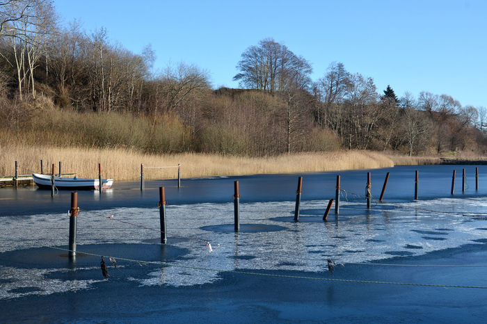 Poles Beauty In Nature Blue Denmark Ice On The Water January Lake No People Outdoors Poles Poles In Water Small Boat Tranquil Scene Tranquility Water Winter Wintertime Cold Temperature