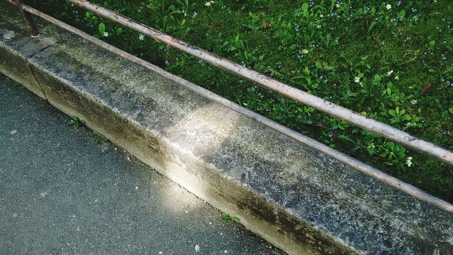 Concrete Grass