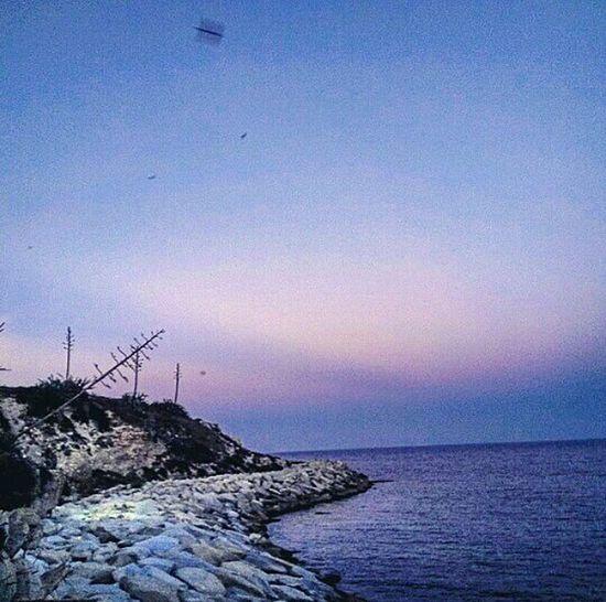 Summer Summertime Beach Life Sea And Sky Tunisia Tunisie Mahdia/Tunisia Mahdia Sunset