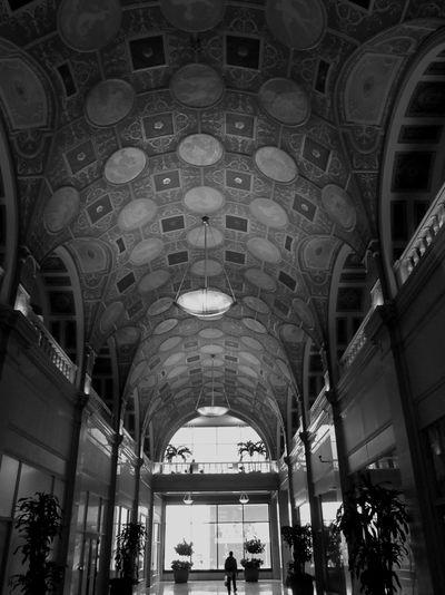 Dixie Terminal