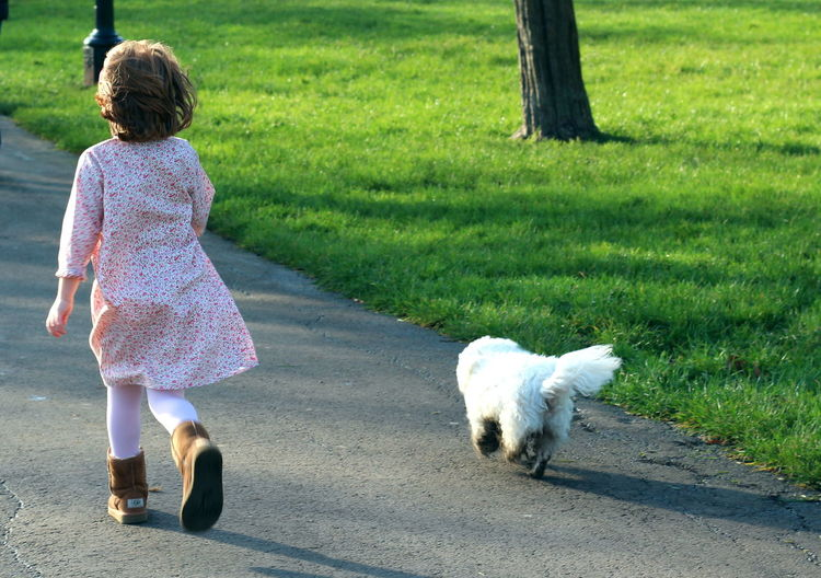 Little girl running with small white dog in park London London lifestyle Travel London Travel Photography London Street Photography London Streets Street Artists British London Parks Primrose Hill Primrose Hill Park Primrose Hill London Green Nature City Park Little Girl Girl Running With Dog Pink Dress Little Girl Running Girl In Park Grass Trees Childhood Memories Childhood