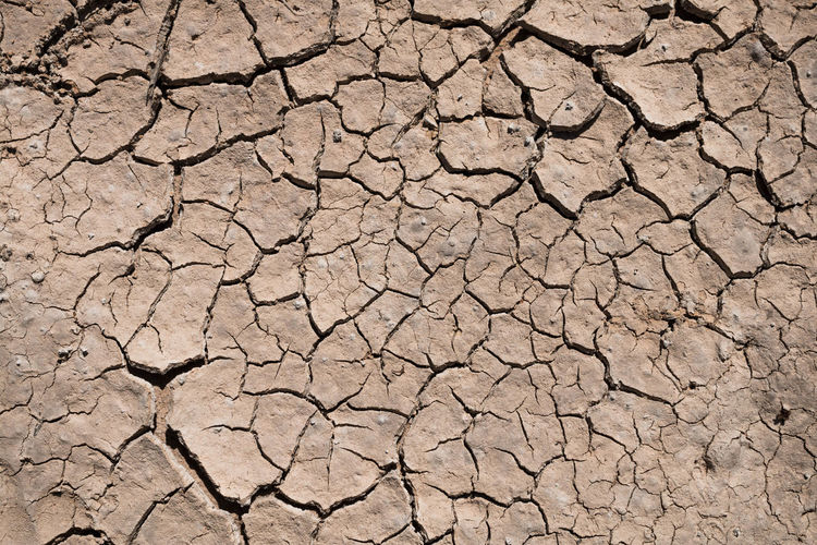 Arid Climate Backgrounds Barren Cracked Dirt Drought Dry Global Warming Land Mud Textured  Weather