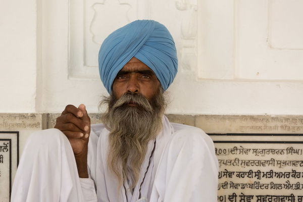 Amritsar ASIA Beard Golden Temple, Amritsar India Lifestyles People Punjab Punjabi Real People Turban