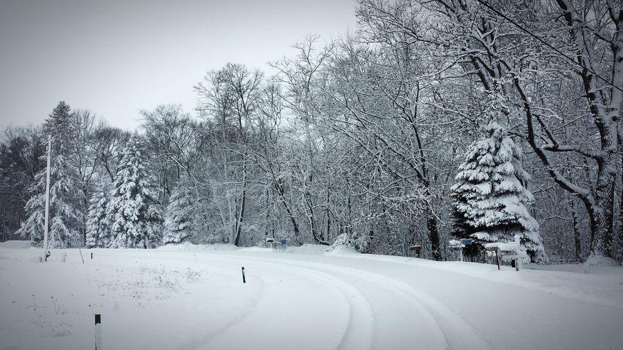 Winter Wonderland Cold Snow Covered Fresh Snow Road Less Travelled Wisconsin Snowpocalypse Markesan