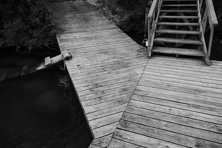 Water Wood -