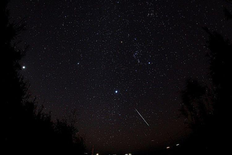*.G'night.* Sky Collection Sky Stars 流星 Night Photography Night Nightphotography 夜空 静岡 流れ星