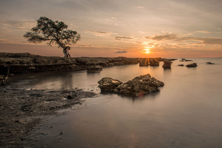 Kuri Beach Beach Beauty In Nature Land Nature No People Orange Color Reflection Rock Scenics - Nature Sea Sky Sun Sunset Tranquil Scene Tranquility Tree Water