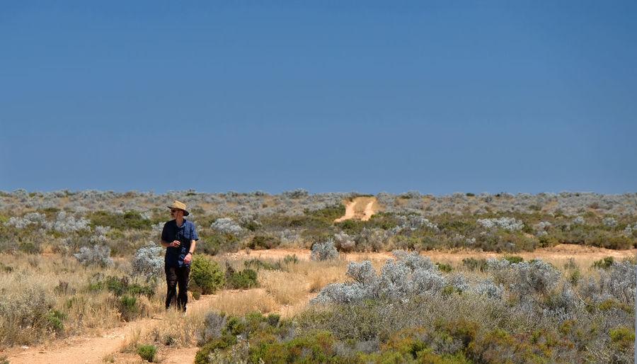 Nullarbor Desert Remote Road Trip Blue South Australia Environment Landscape One Person Sky Nature Copy Space Adventure Exploration Scenics - Nature Semi-arid Outdoors Track