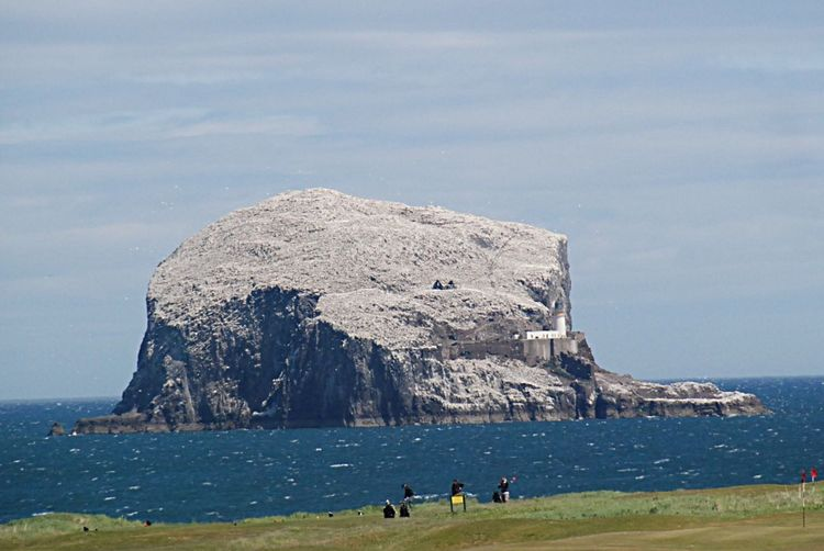 Bass Rock North Berwick Beach,Scotland Sea Nature Beauty In Nature Water Scenics Rock - Object Rock Formation Sky Outdoors Tranquility Day Tranquil Scene Mountain Horizon Over Water Large Group Of People Cliff Landscape Travel Destinations Real People People Golf Course Golfers