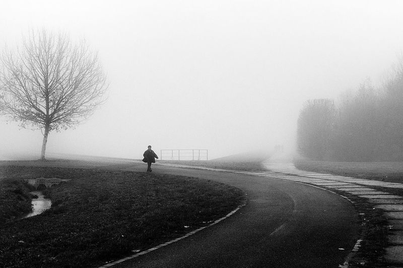 A Wintery Tale Fog Bare Tree Road Transportation Solitude Landscape Foggy Weather EyeEm Best Shots Blackandwhite Black & White Black And White Street Photography Copy Space Standing Tranquility The Way Forward Remote Day Branch Outdoors Nature Sky