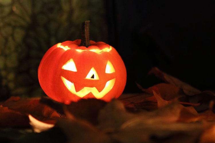 Close-up view of illuminated pumpkin at night
