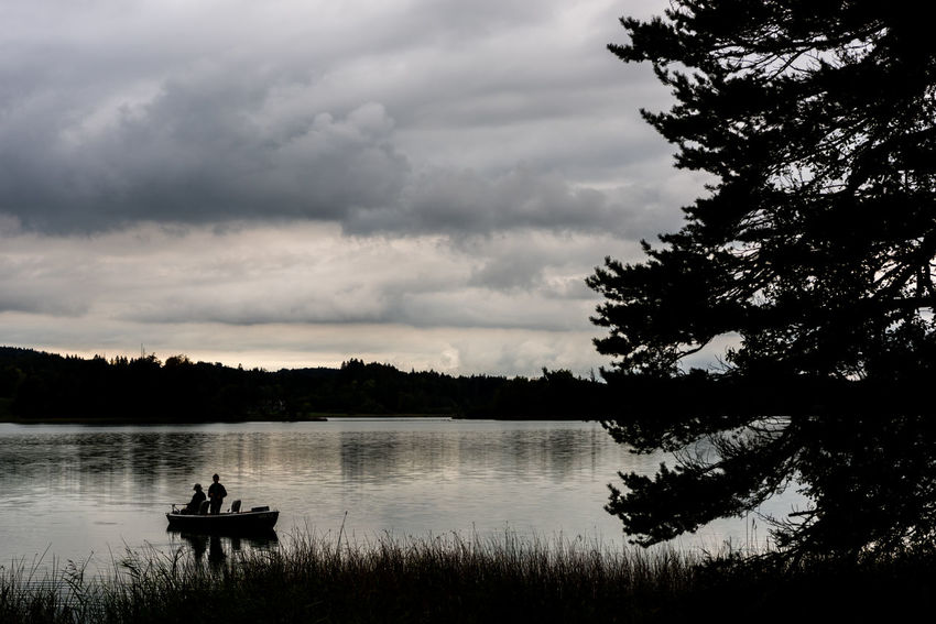 Tree Plant Water Lake Cloud - Sky Sky Nature Tranquility Tranquil Scene Scenics - Nature Beauty In Nature Nautical Vessel Non-urban Scene Sitting Forest Day Silhouette Reflection Outdoors Osterseen Boat Calm Sunset Landscape Lake View