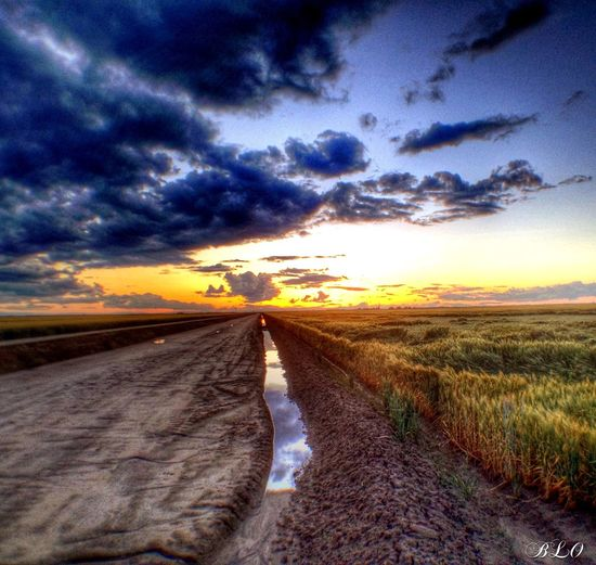 Rural Scenes Sunset Rural Landscape Brilliant Farm Life Countryside Hanford CA Nature