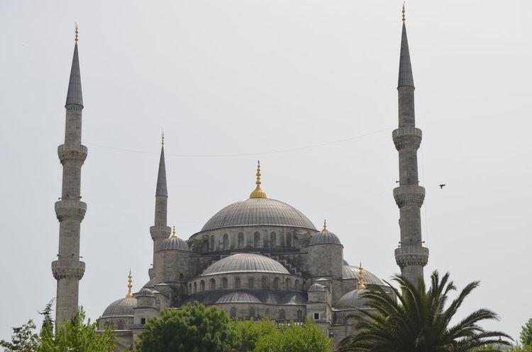 Mosque Mosque Turkey Sultanahmet SultanAhmetBlueMosque Sultanahmet Camii