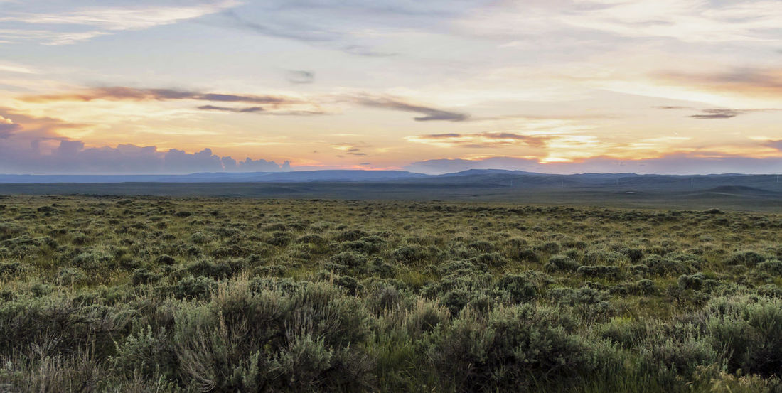 Oregon Trail Wyoming USA Cloud Colors Sage Twilight Beauty In Nature Cloud - Sky Day Dusk Field Grass Landscape Nature No People Outdoors Scenics Sky Sunset Tranquil Scene Tranquility
