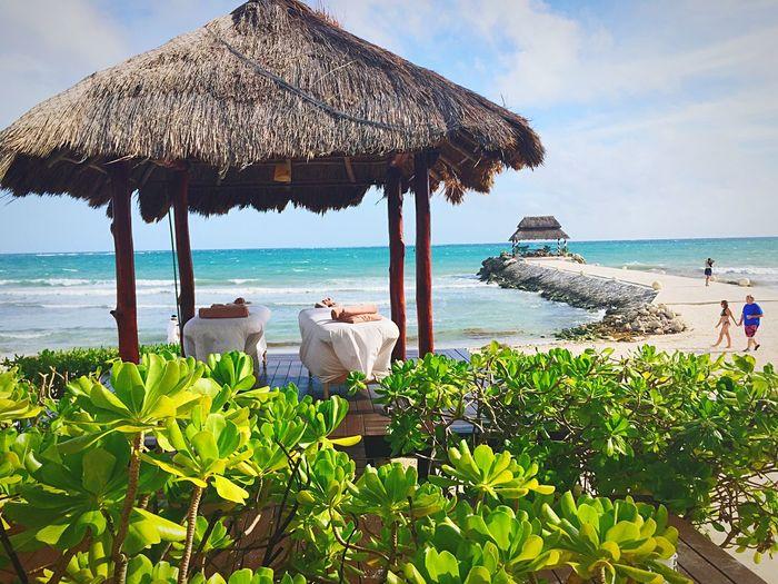 Small And Swift Riviera Maya #puertomorelos