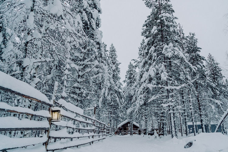 The Great Outdoors - 2018 EyeEm Awards The Traveler - 2018 EyeEm Awards Beauty In Nature Built Structure Cold Temperature Covering Finnland Nature Outdoors Plant Scenics - Nature Snow Snowing Tranquil Scene Tranquility Travel Destinations Tree White Color Winter