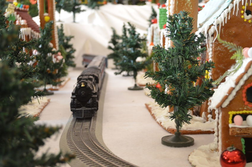 Spielzeugeisenbahn Toy Train Celebration Celebration Event Christmas Christmas Decoration Christmas Ornament Christmas Tree Close-up Day Decoration Green Color Holiday - Event Indoors  Nature No People Plant Table Tradition Tree Winter