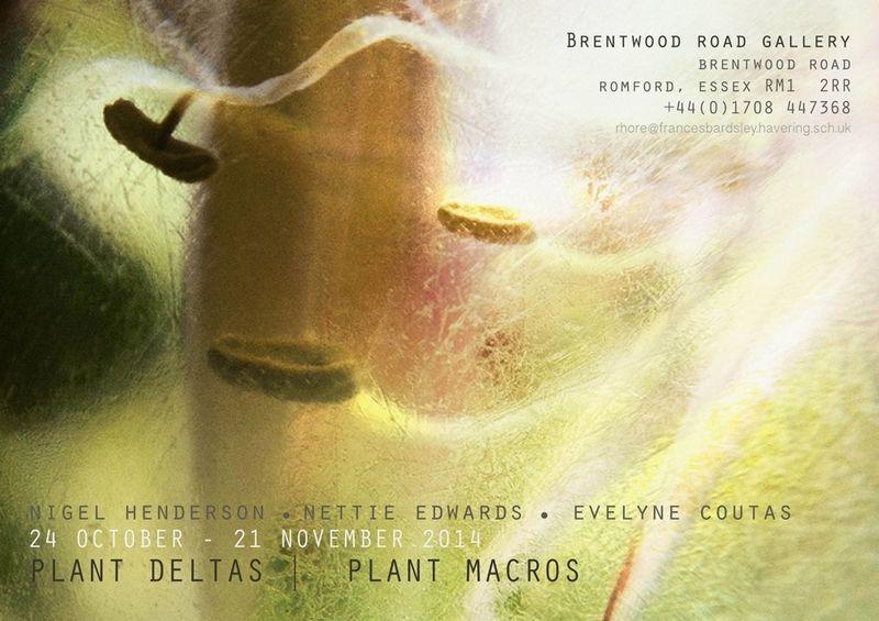 My work being shown alongside Blossfeltd, Henderson and Coutas #PlantDeltas_PlantMacros #BrentwoodRoadGallery #Romford Shootermag