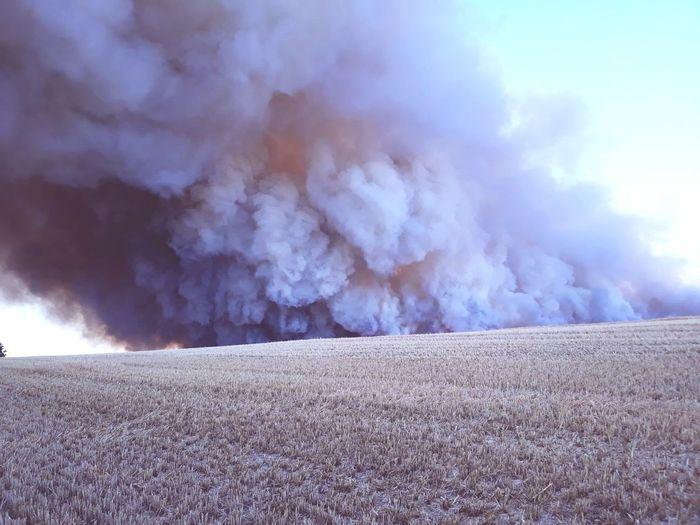 Feldbrand Flames Feuer Fire Field Fire Disaster Smoke Wheat Field Burning Bush Burn Sky Heat Smoke Stack Air Pollution First Eyeem Photo