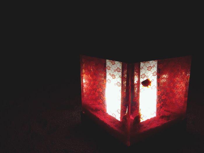 Art Aquarium 2014 Fantastic Exhibition Goldfish Night Lights