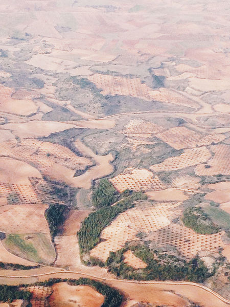 Fieldscape SPAIN Travel Aerial View Agriculture Arid Climate Beauty In Nature Day Flight Flight ✈ IPhoneography Iphoneonly Landscape Nature No People On A Plane Patchwork Landscape Rural Scene Scenics Tranquil Scene Tranquility Travel Destinations Voyage EyeEmNewHere EyeEm Nature Lover
