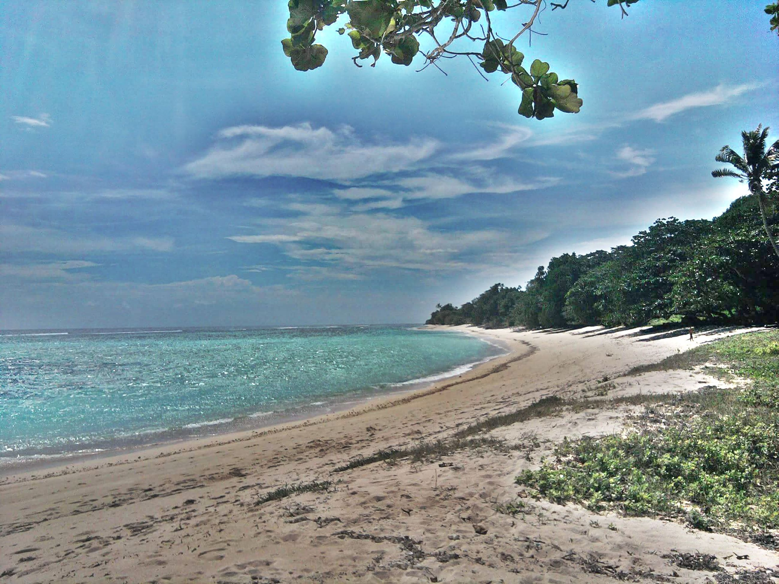 sea, beach, sky, water, tranquil scene, tranquility, sand, horizon over water, shore, scenics, beauty in nature, nature, cloud - sky, tree, cloud, coastline, idyllic, blue, day, calm
