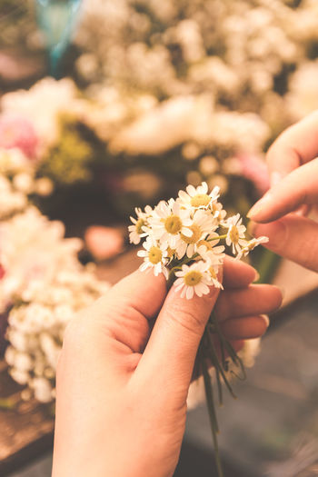 Human Hand Hand Human Body Part Flowering Plant Holding Flower One Person Real People Freshness Plant Body Part Lifestyles Close-up Nature Finger Women Focus On Foreground Human Finger Vulnerability  Flower Head Human Limb Flower Wreath