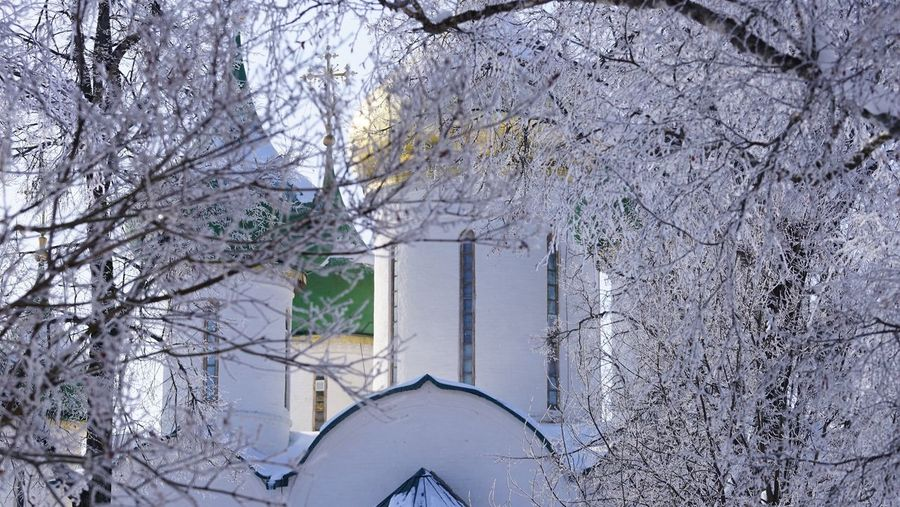 Monastery in snow Religion Orthodoxy Architecture Tree Snow No People Winter White Color Outdoors Cold Temperature