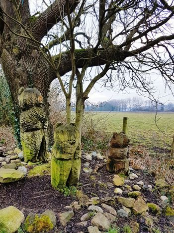 3 bears Nature No People Beauty In Nature Outdoors Day Tree Sky Branch Carvings Carved In Wood Bears Bento Miles Away EyeEmNewHere