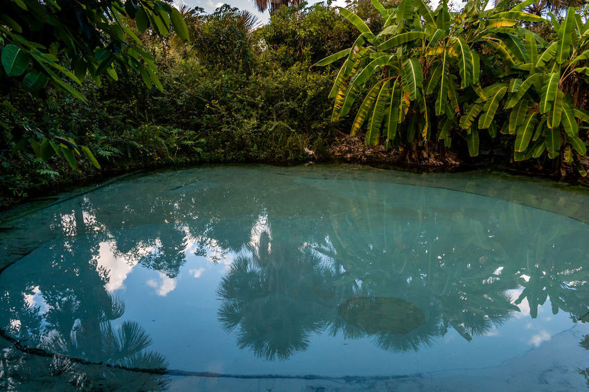 Brazil Fervedouro Parque Estadual Do Jalapão Beauty In Nature Brasil Clear Water Jalapeños Natural Pool Nature No People Outdoor Outdoor Photography Outdoors Outdoors Photograpghy  State Park  Tocantins Tocantins Brasil Tocantins Brazil Tropical Water Water Spring The Traveler - 2018 EyeEm Awards