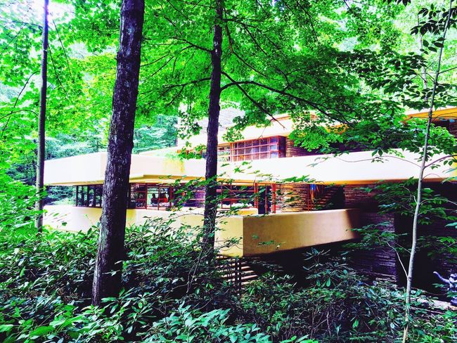 Outdoors Architecture Frank Lloyd Wright