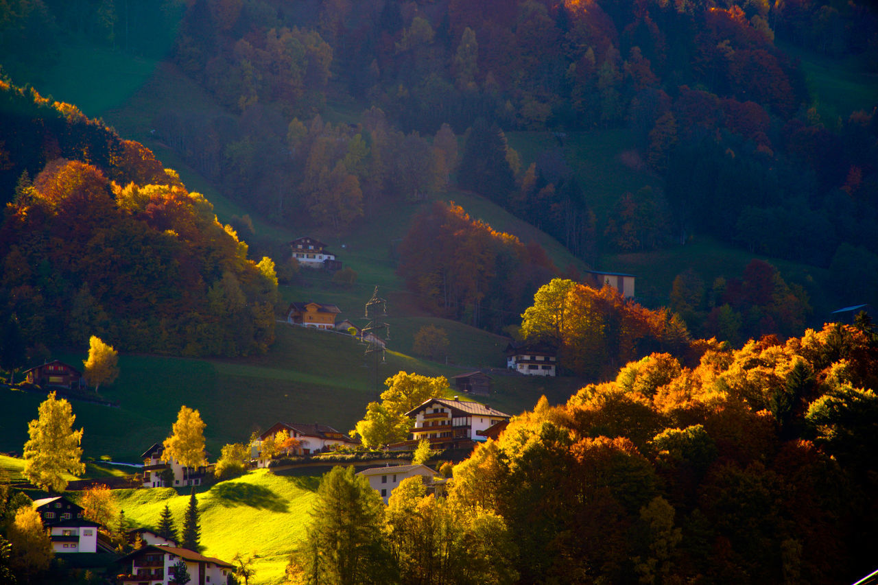 High Angle View Of Houses By Trees During Autumn