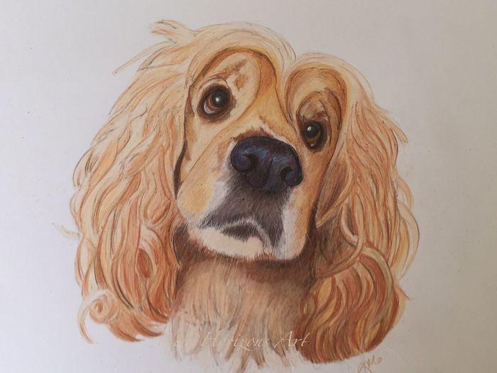Myartwork Portrait ArtWork Art #illustration #drawing #draw #tagsforlikes #picture #photography #artist #sketch #sketchbook #paper #pen #pencil #artsy #in MyArt Animal_collection Dog Pencil Drawing Artist Pets