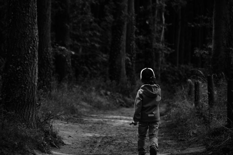 Rear view of kid walking in forest