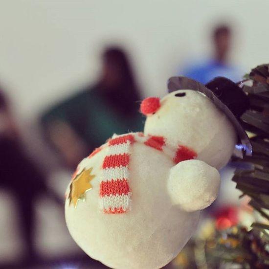 Frostythesnowman Snowman Snow MadeOfSnow Fairytale  ChristmasTreeBuntings Christmastree Tree Christmas Snowy Winter Christmas2015 Dslrclicks