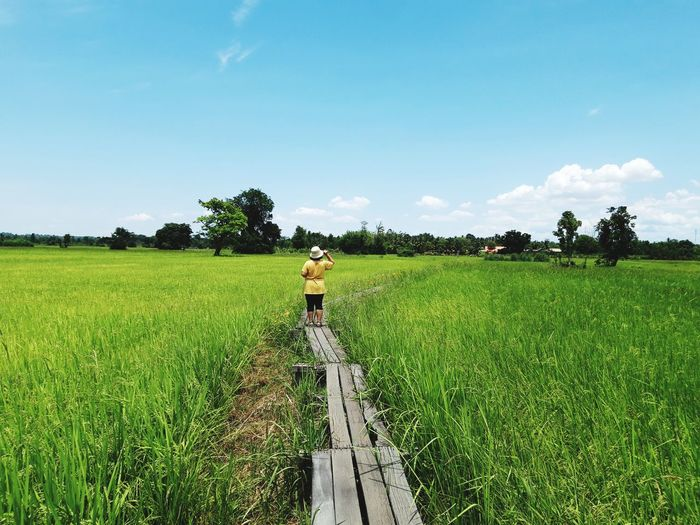 Rear view of woman standing on boardwalk amidst agricultural field against sky