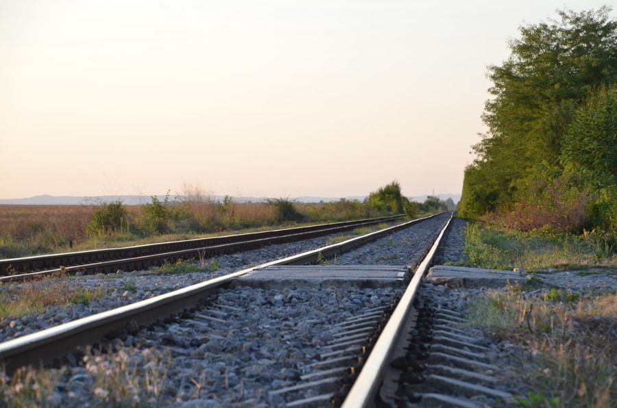 Beauty In Nature Clear Sky Day Growth Nature No People Outdoors Rail Transportation Railroad Tie Railroad Track Scenics Sky The Way Forward Tranquil Scene Tranquility Transportation Tree